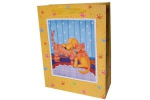 gift bag paper bag shopping bag lower prices10409
