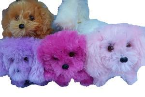 plush toys yiwu toy market china toys 10028