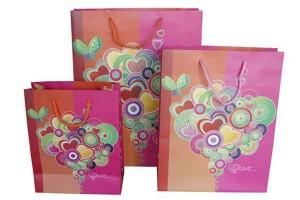 gift bag paper bag shopping bag lower prices10338