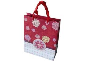 China Cheap price Plastic Bag - gift bag paper bag shopping bag lower prices10326 – Kingstone