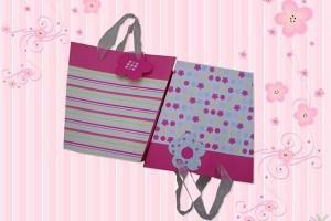 gift bag paper bag shopping bag lower prices10265